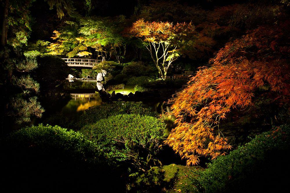 Summer Gallery | Portland Japanese Garden