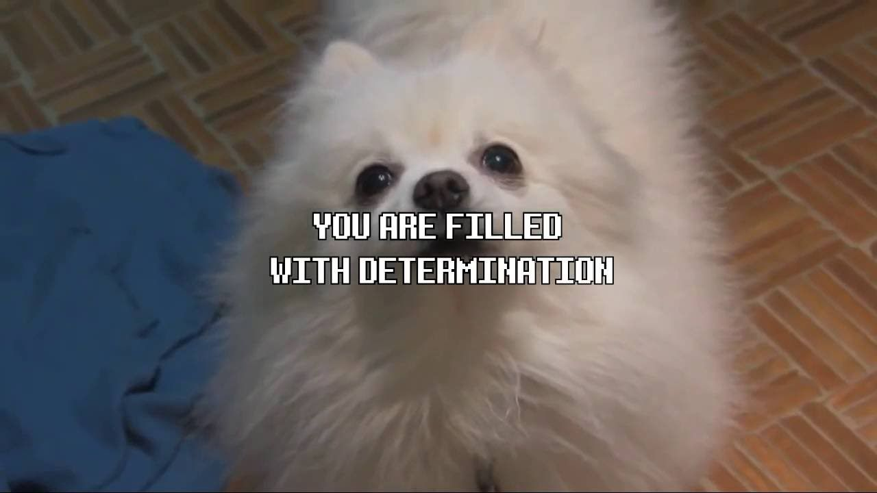 All Gabe The Dog Undertale Songs Compilation The First One Is The