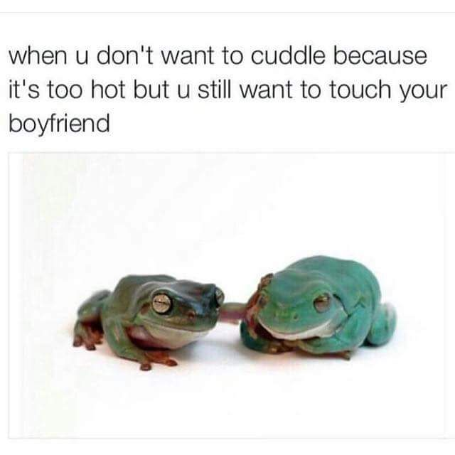 When You Want To Cuddle With Your Boy Friend But Its To Hot Meme Funny Boyfriend Memes Boyfriend Humor Funny Relationship Quotes