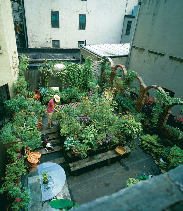 Rooftop Refuge in the Asphalt Jungle - Vegetable Gardener | Jardin ...