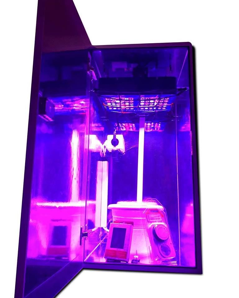 A Led Grow Box Is An Amazing Option To Take Into Account 400 x 300