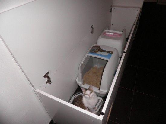 Litter Box Double Hideaway Katzenklo Katzen Klo Und Katzenmobel