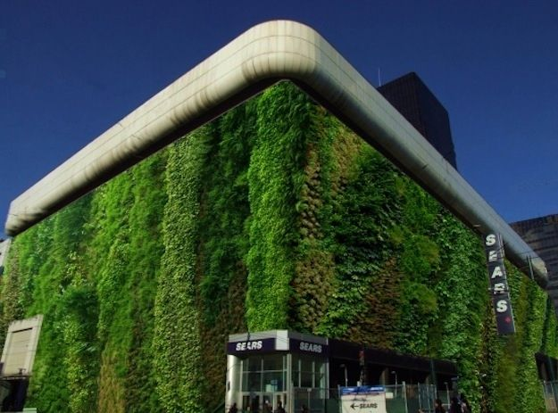 A Sears Swathed in Green | Community Post: 39 Insanely Cool Vertical Gardens
