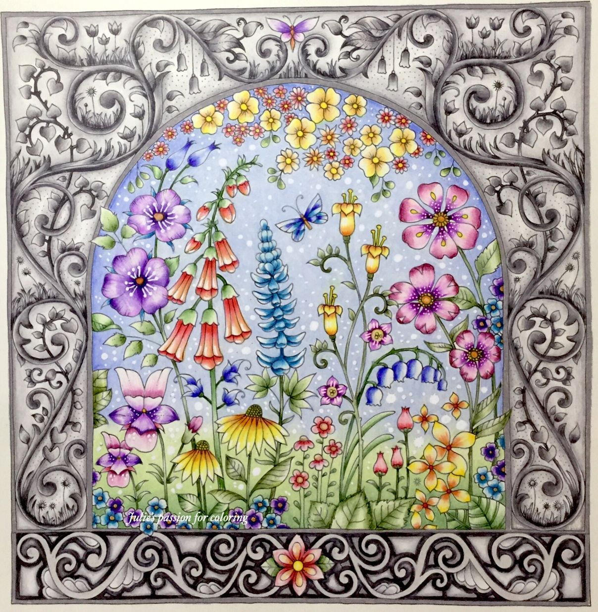 Pin on cb johanna basford world of flowers