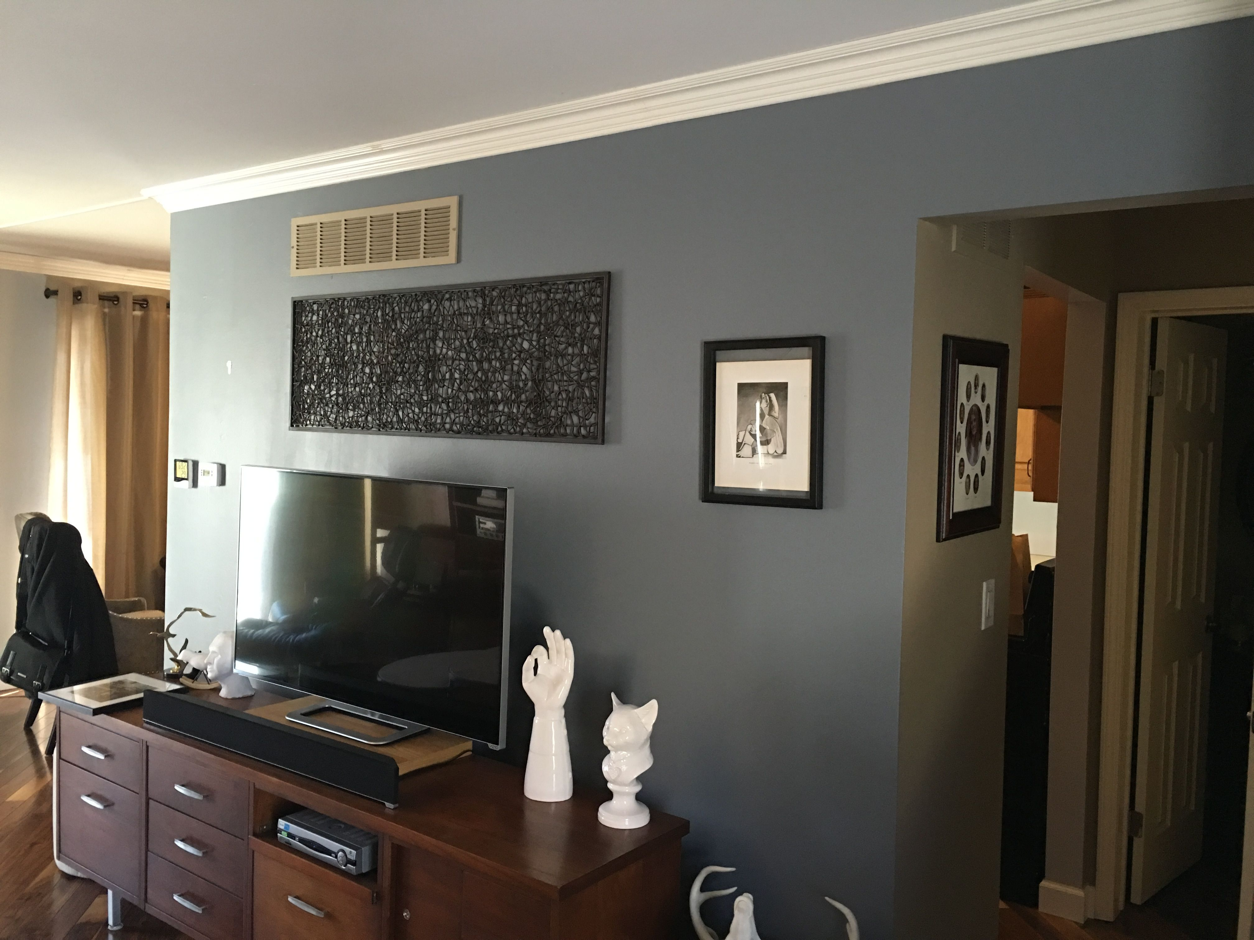 Serious gray sherwin williams i loved this paint color - Sherwin williams interior paint finishes ...
