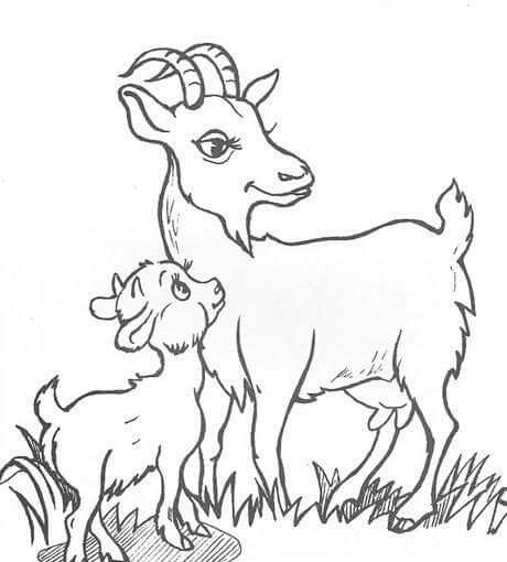 Pin By Belemir Su On Baby Quilts Farm Animal Coloring Pages Animal Coloring Pages Animal Embroidery