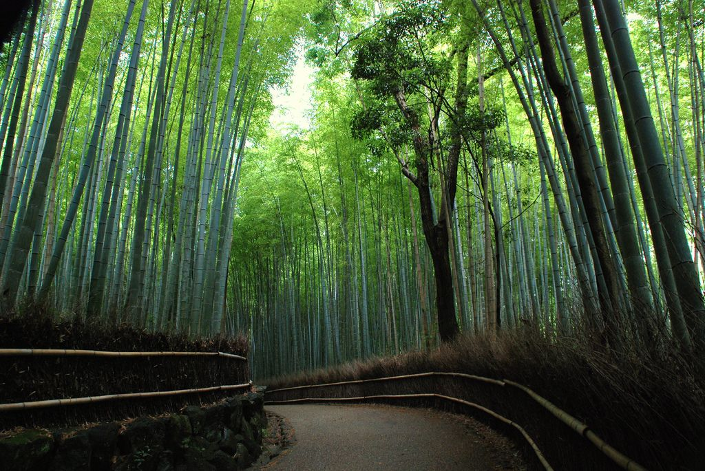Kyoto Two-Day Itinerary - Inside Kyoto