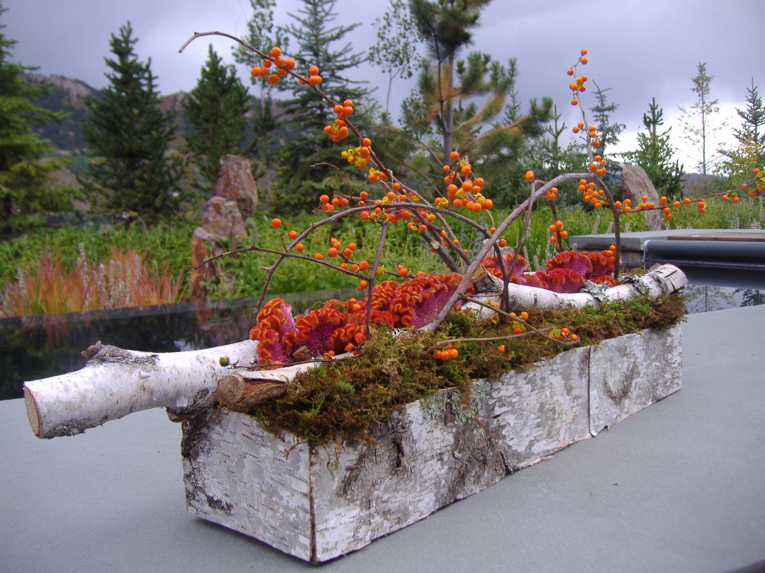 Garden Bark Box- The Aspen Branch Original- www.aspenbranch.com ...