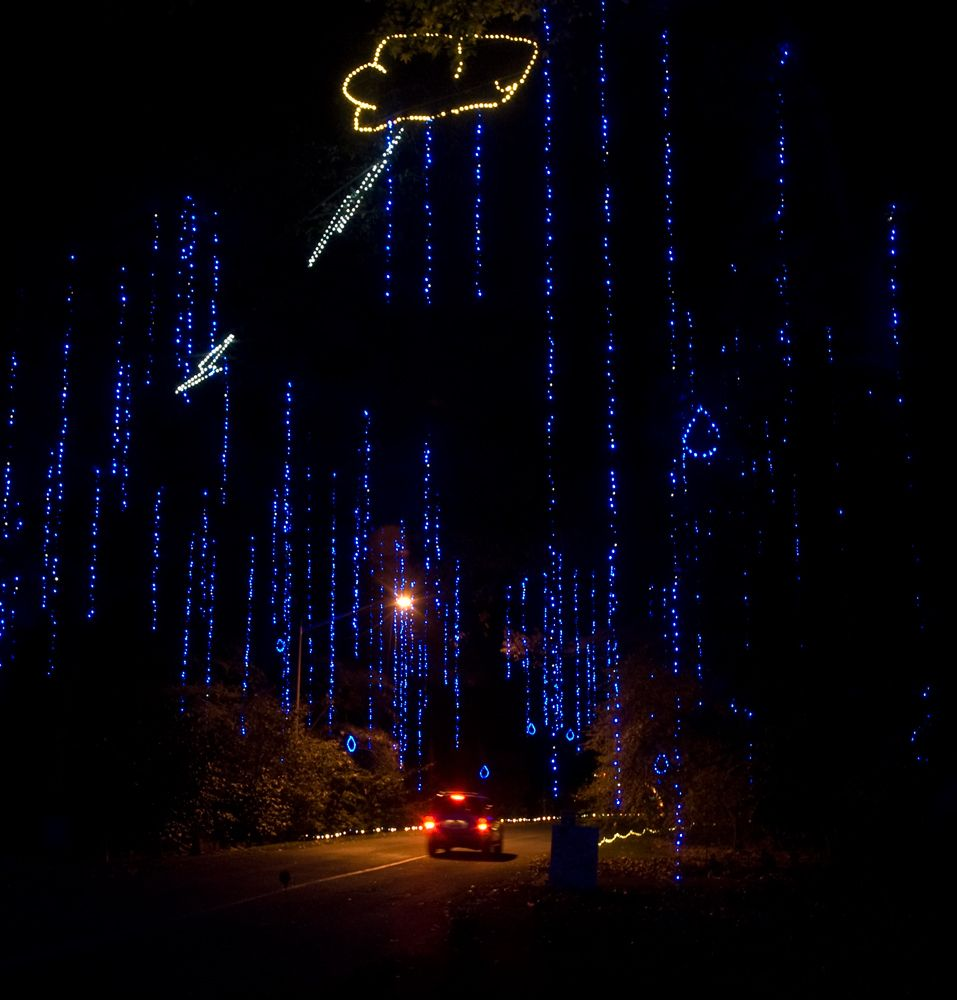 Botanical Gardens Holiday Lights Norfolk | Viewdulah.co