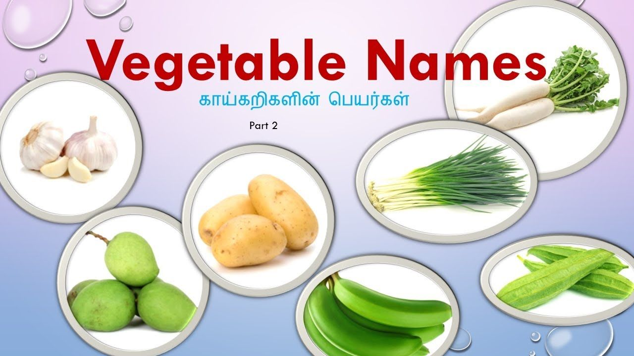 Idea By Uppd Pava Ceation On English And Tamil Vegetables