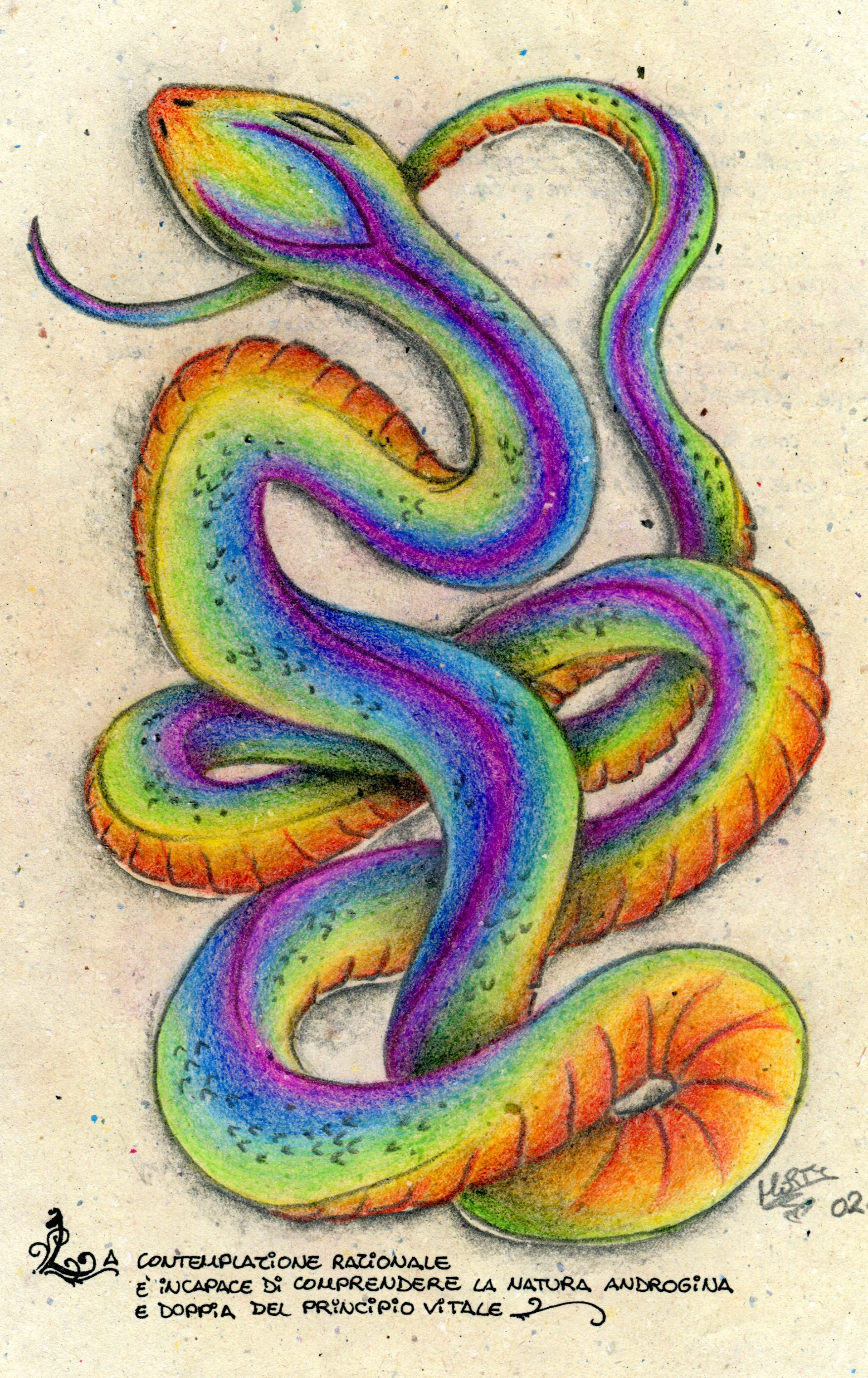 Rainbow Serpent Yahoo Image Search Results With Images