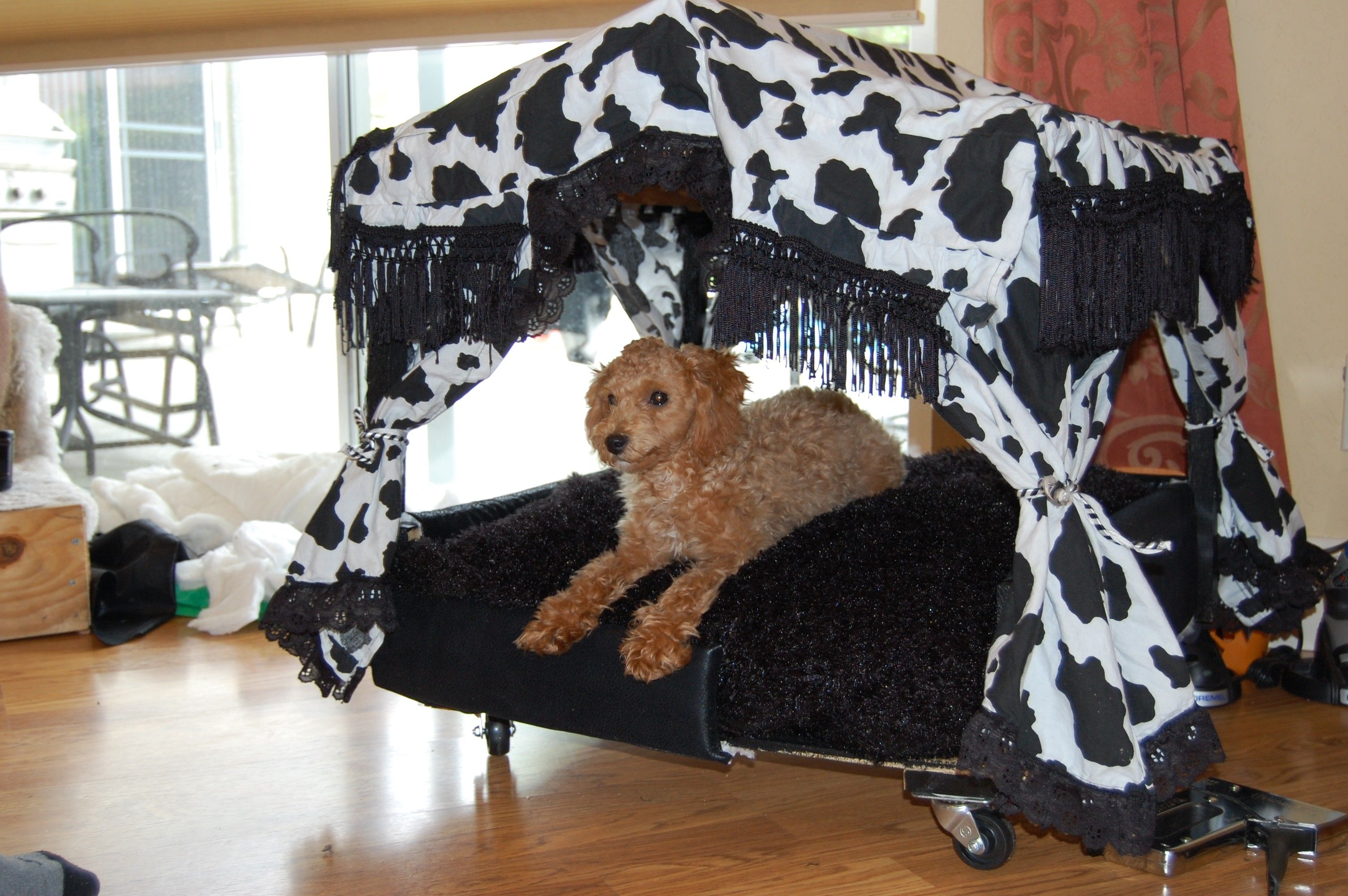 Dog Bed Fit For A King Do You Ever See Those Fancy Dog Beds And Then See The Price Well I Did And Said I Could Make That Well Fancy