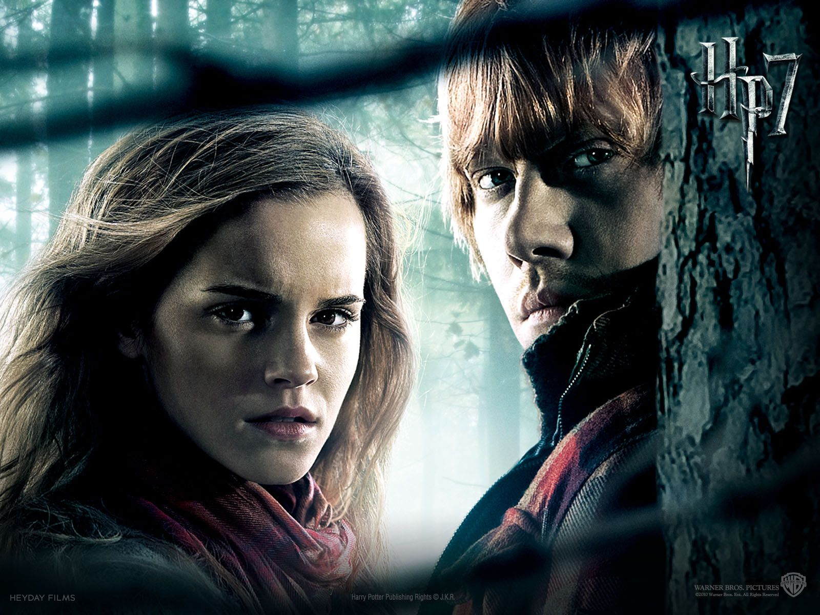 Harry Potter Wallpaper Hermione Filmes Legais Rony E Hermione