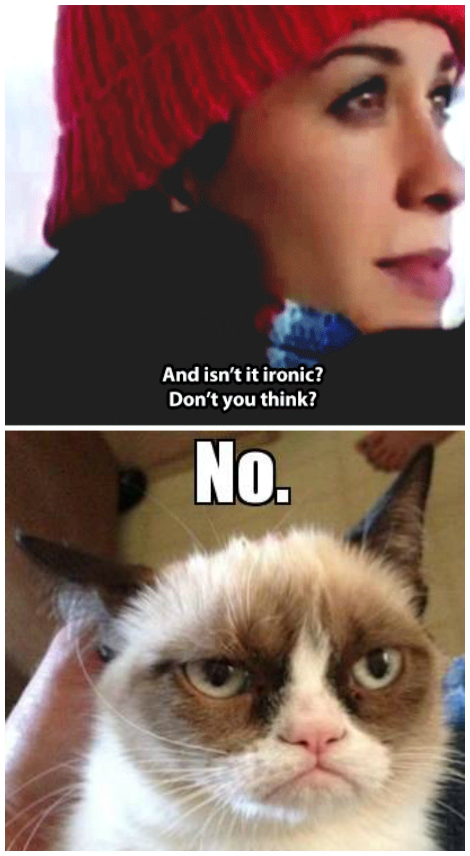 Grumpy Cat Understands Irony