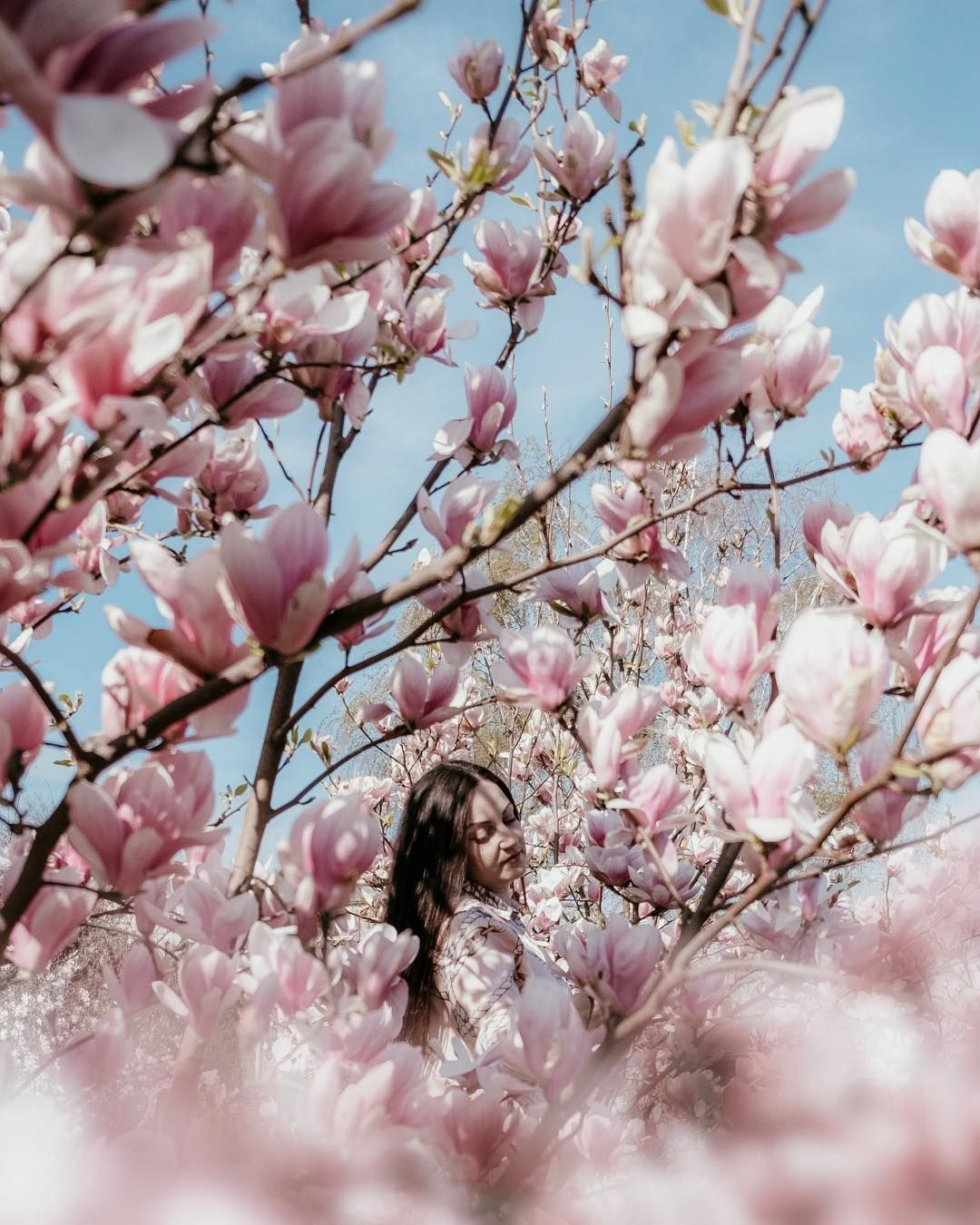 Spring Magnolia In Timisoara Couple Getaway Travel Instagram Travel Stories