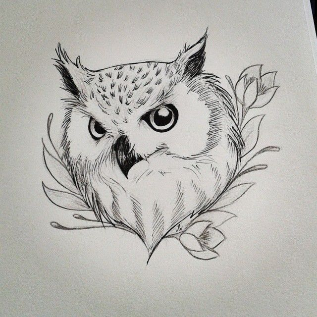 how to draw an owl on a branch