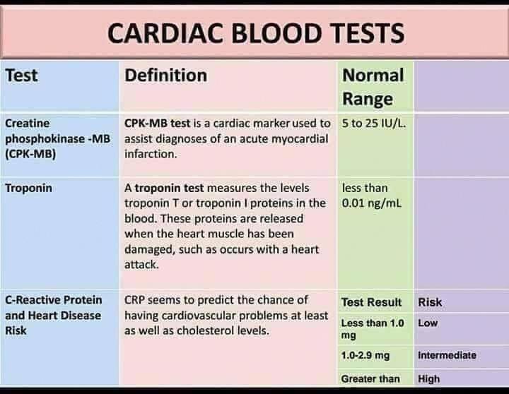 nursing programs accelerated blood test rhit certification kidney schools function scholarships liver topnursingcareers nc semen analysis bestnursingschools