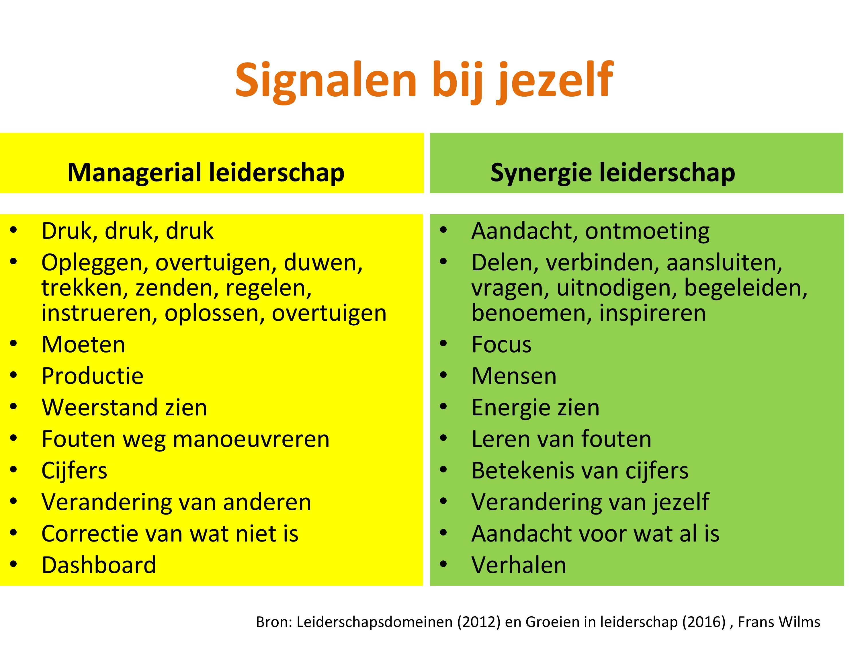 Managerial Leiderschap En Synergie Leiderschap Kenmerken
