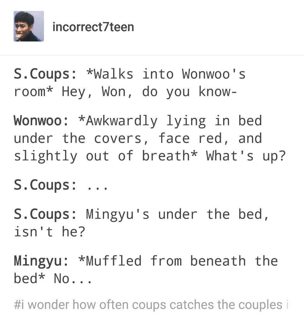 I'm crying, Mingyu is so stupid ohmygawd, i can so imagine this