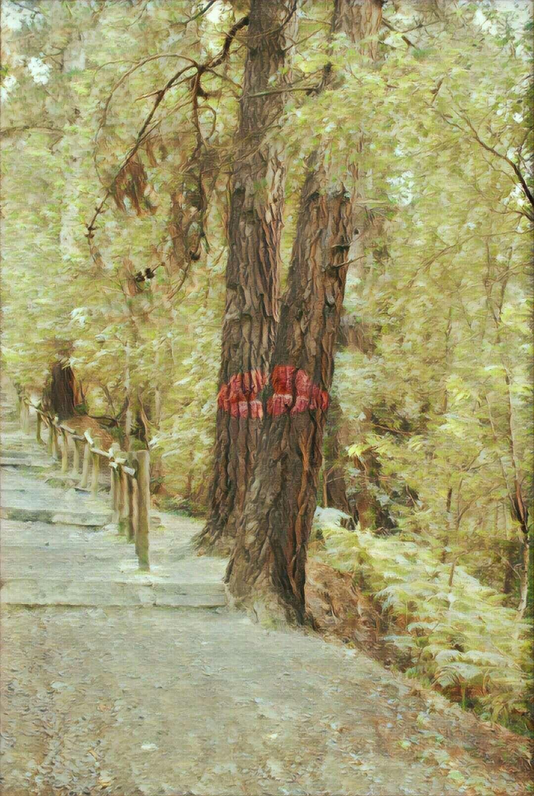 📱Beso XXL 💋 #fotodeldia #prisma #dailyphoto  #bosque #forest #oma #redmipro #naturaleza #nature #kiss #arte #art