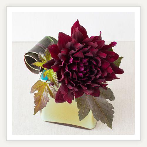 初秋に旬を迎えるダリアの品種や活け方をご紹介します。