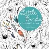 Little Birds Little Birds Coloring Books Birds