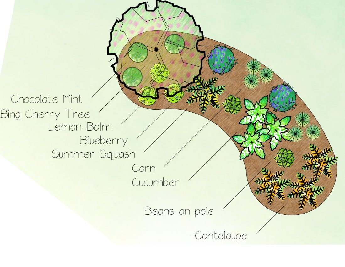 Creating an edible landscape in michigan landscape for Edible garden design ideas