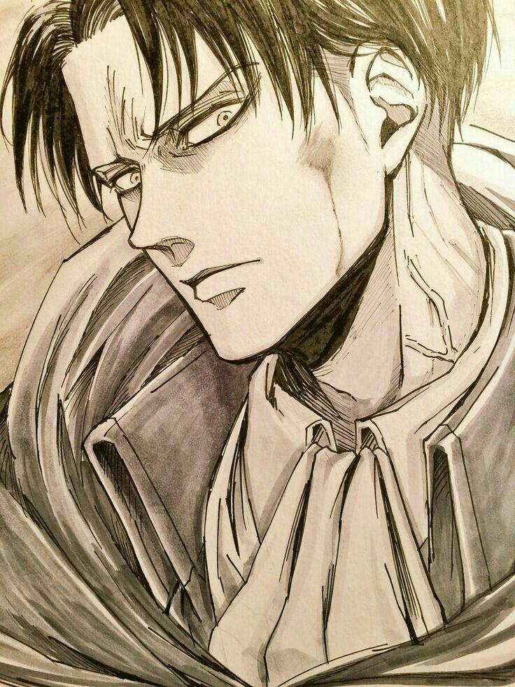 Levi Ackerman Idc As Long As Your Staring At Meh Attack On Titan Levi Attack On Titan Art Attack On Titan Anime