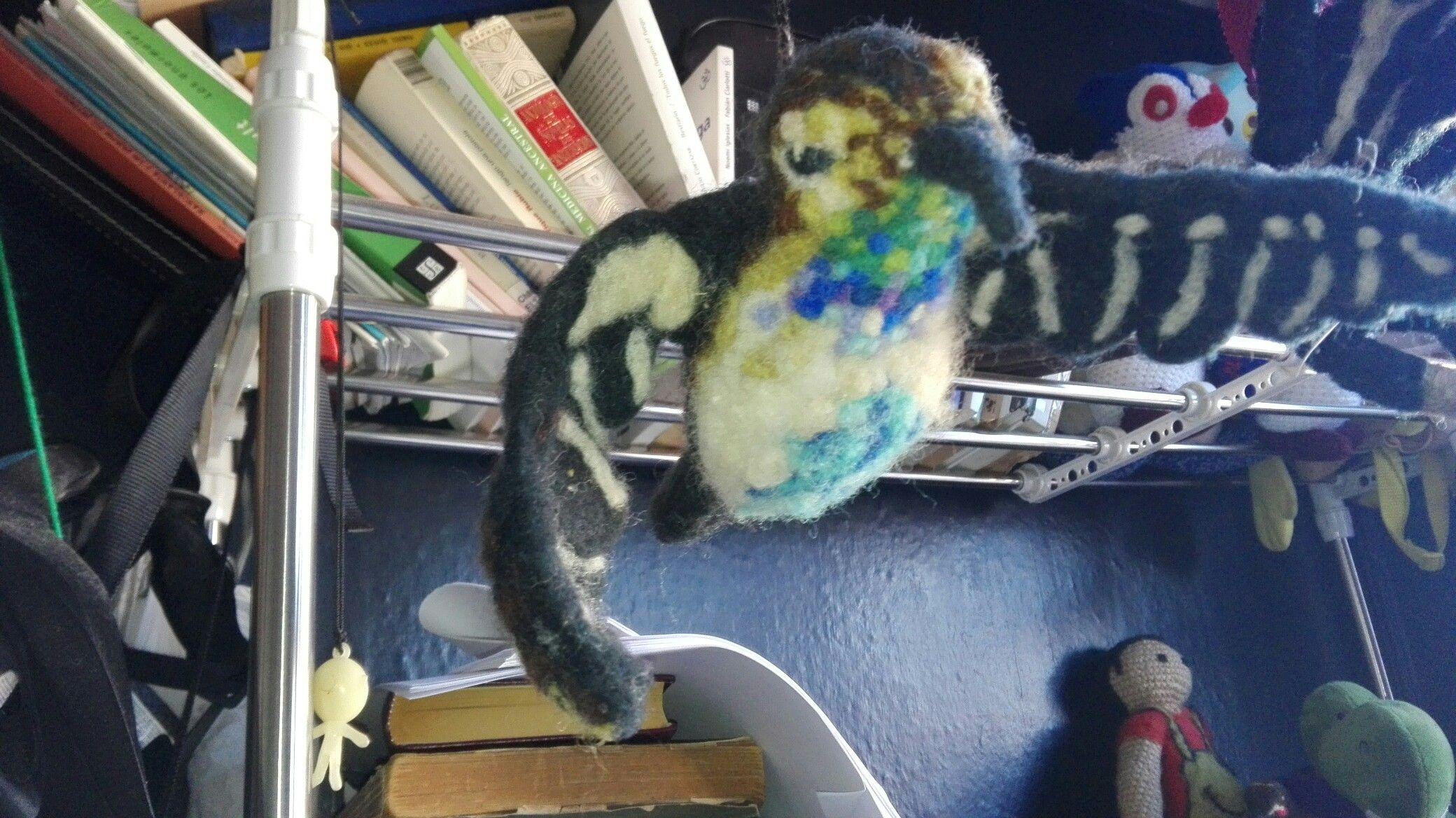Colibrí vellón agujado vellon pinterest