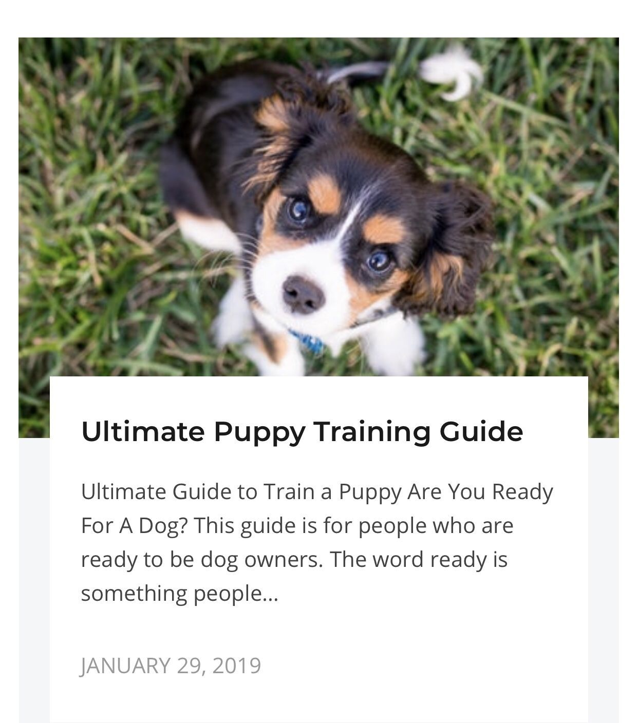 Ultimate Puppy Training Guide Puppy Training Guide Puppy Training Dog Training Come