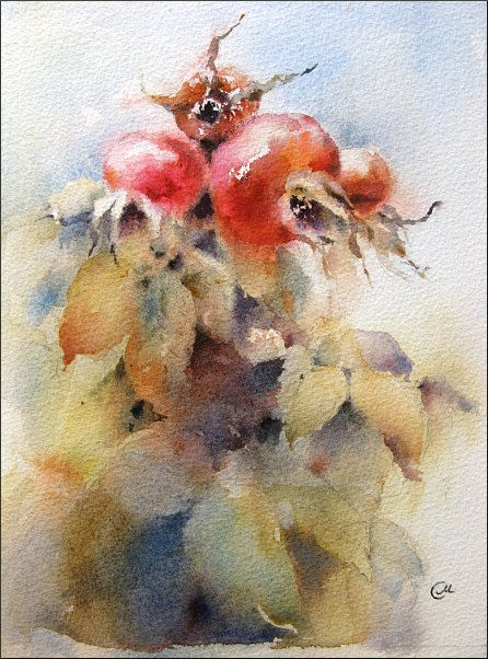 Dog Rose Original Watercolor Painting by CMwatercolors, $120.00
