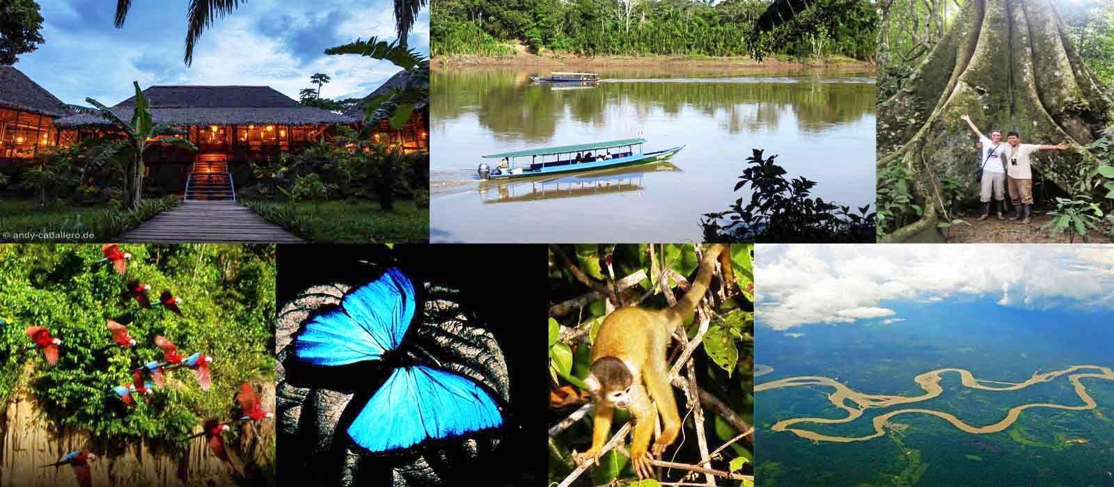 Resultado de imagen para collage turismo Madre de Dios | PGAUSIL ...