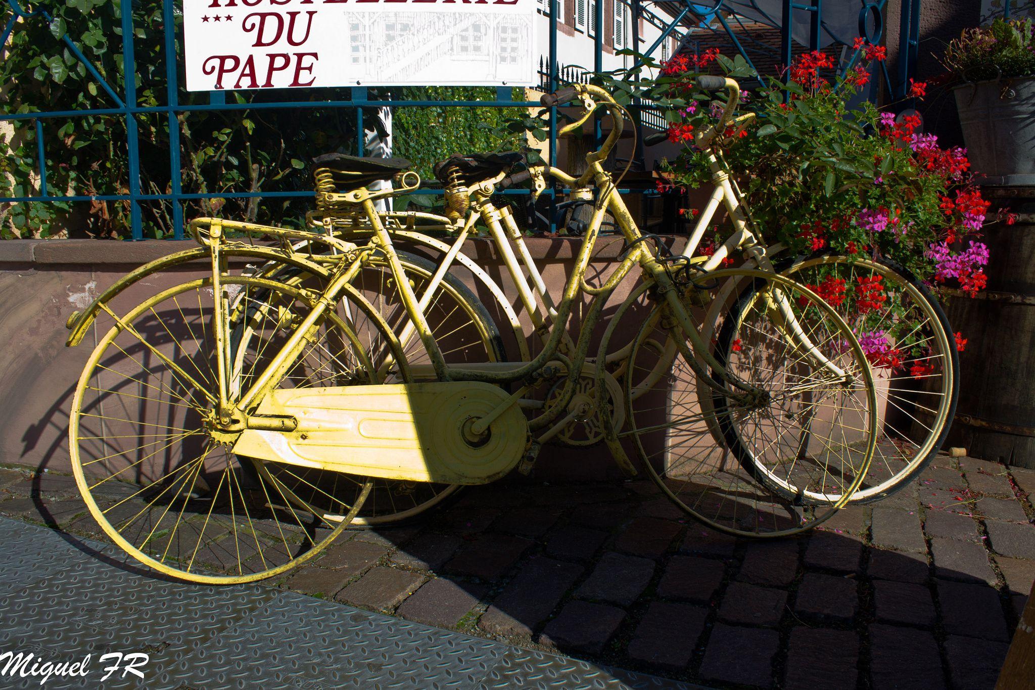 Bicicletas de otros tiempos - null