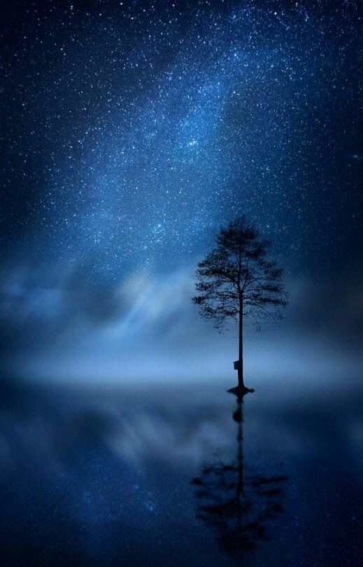 Sky Night Skies Adventure Awaits Starry Nights Space Posts Beautiful Scenery Places Sparkling Stars