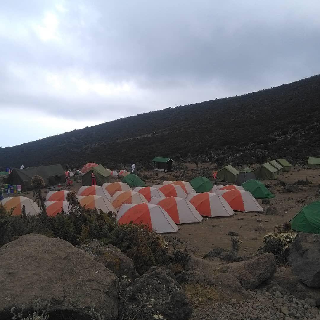 Direct from Mount Kilimanjaro at Shida Camp @twendeafricatours @naiaranaigua