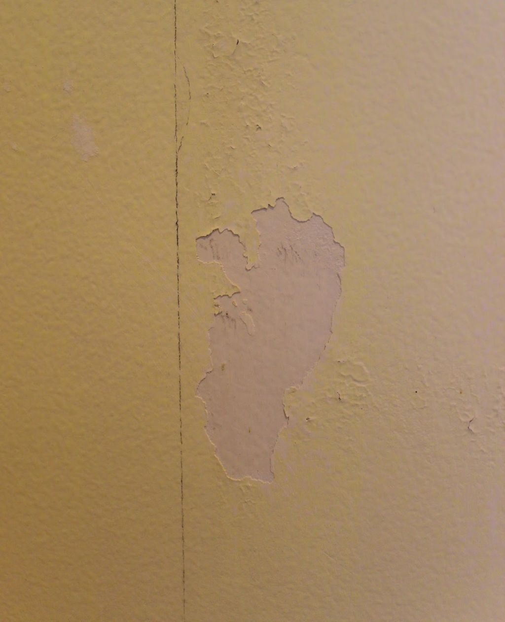 can you paint over dried wallpaper paste » Wallppapers