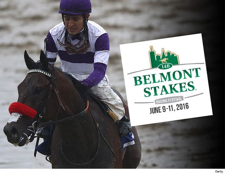 Nyquist -- Pulled from Belmont ... Medical Complications - http://blog.clairepeetz.com/nyquist-pulled-from-belmont-medical-complications/