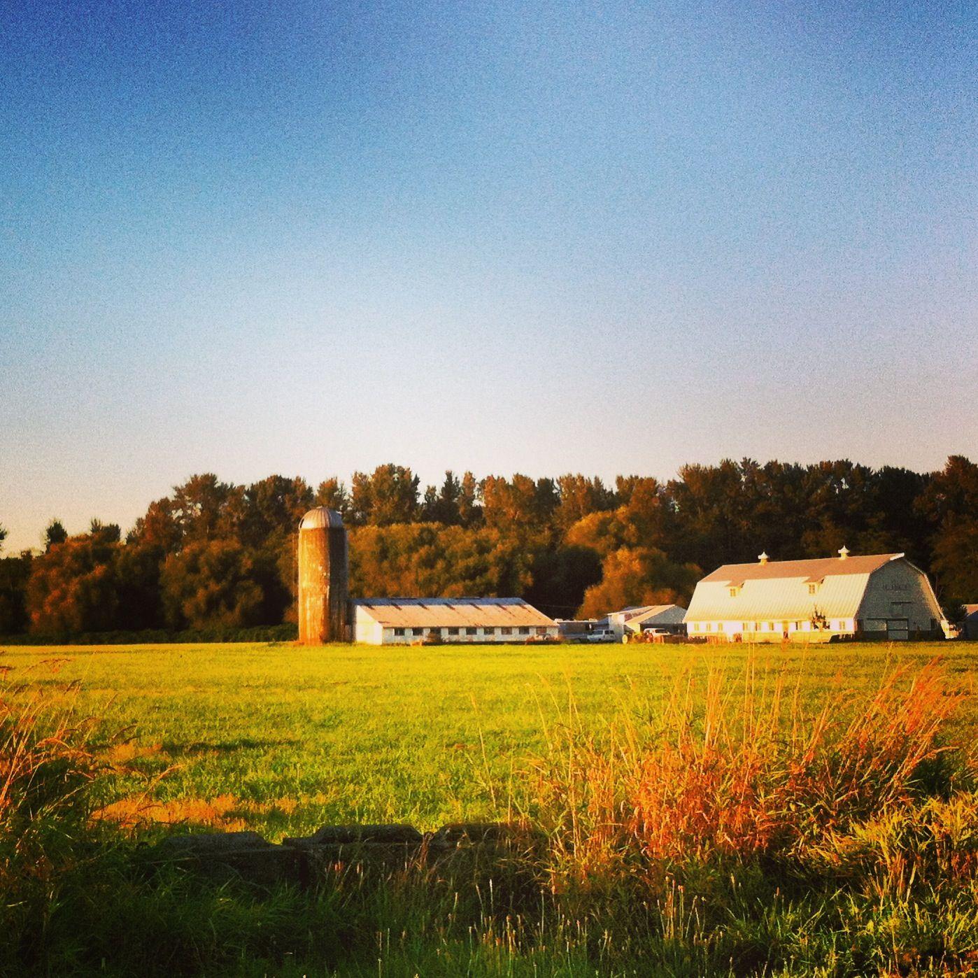 Everson Wa Favorite Places Country Roads Ridge Farm