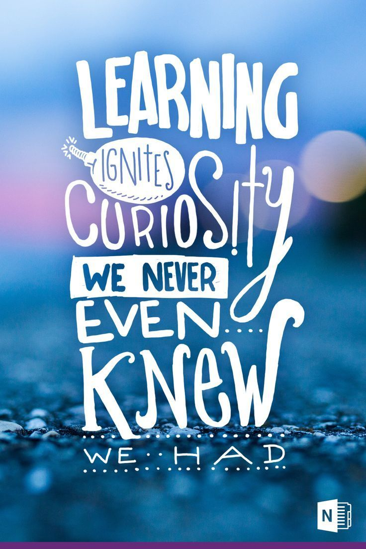 Learning Ignites Curiosity We Never Even Knew We Had Teaching Quotes Learning Quotes Words
