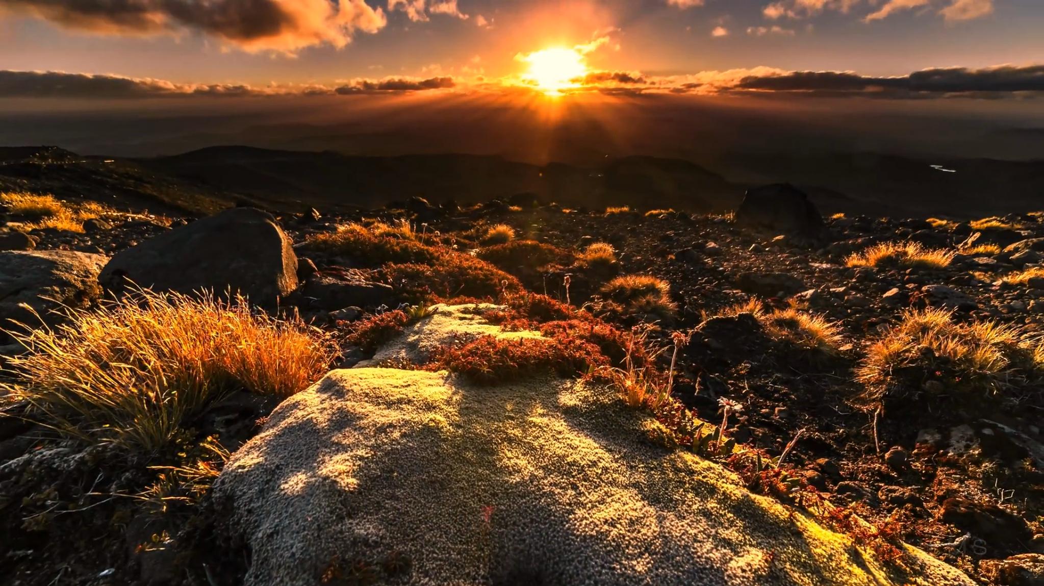 New Zealand Planet Earth List En Sitios