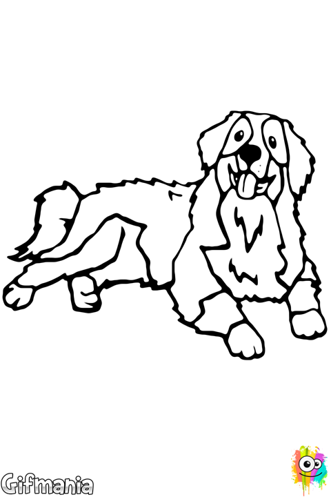 Free Dogs Coloring Pages Color In This Picture Of An Bernese Mountain Dog And Others With Our Library Online