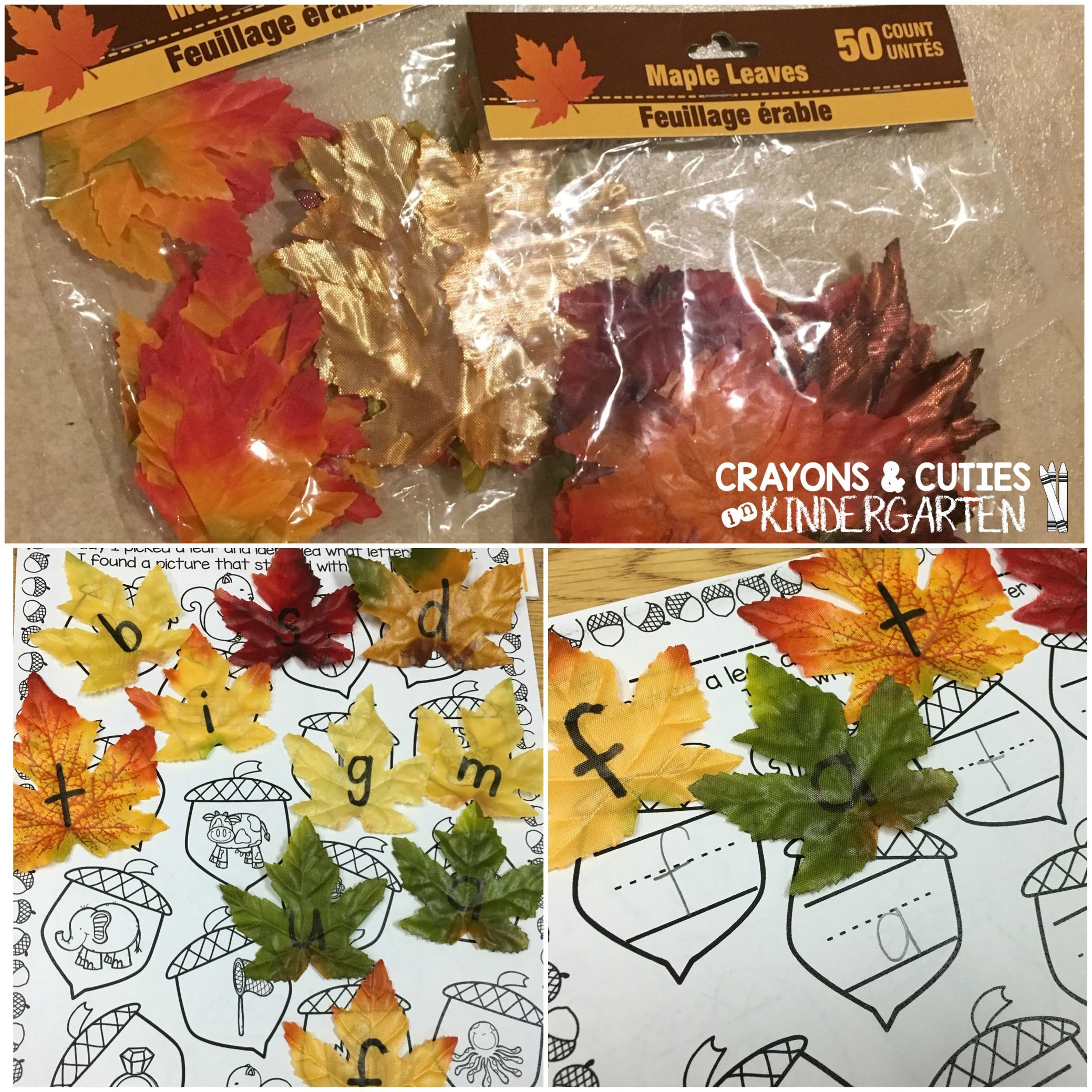 Raking Up Letters and Letter Sounds!  Use artificial leaves for letter learning fun!  FREE editable printable too!