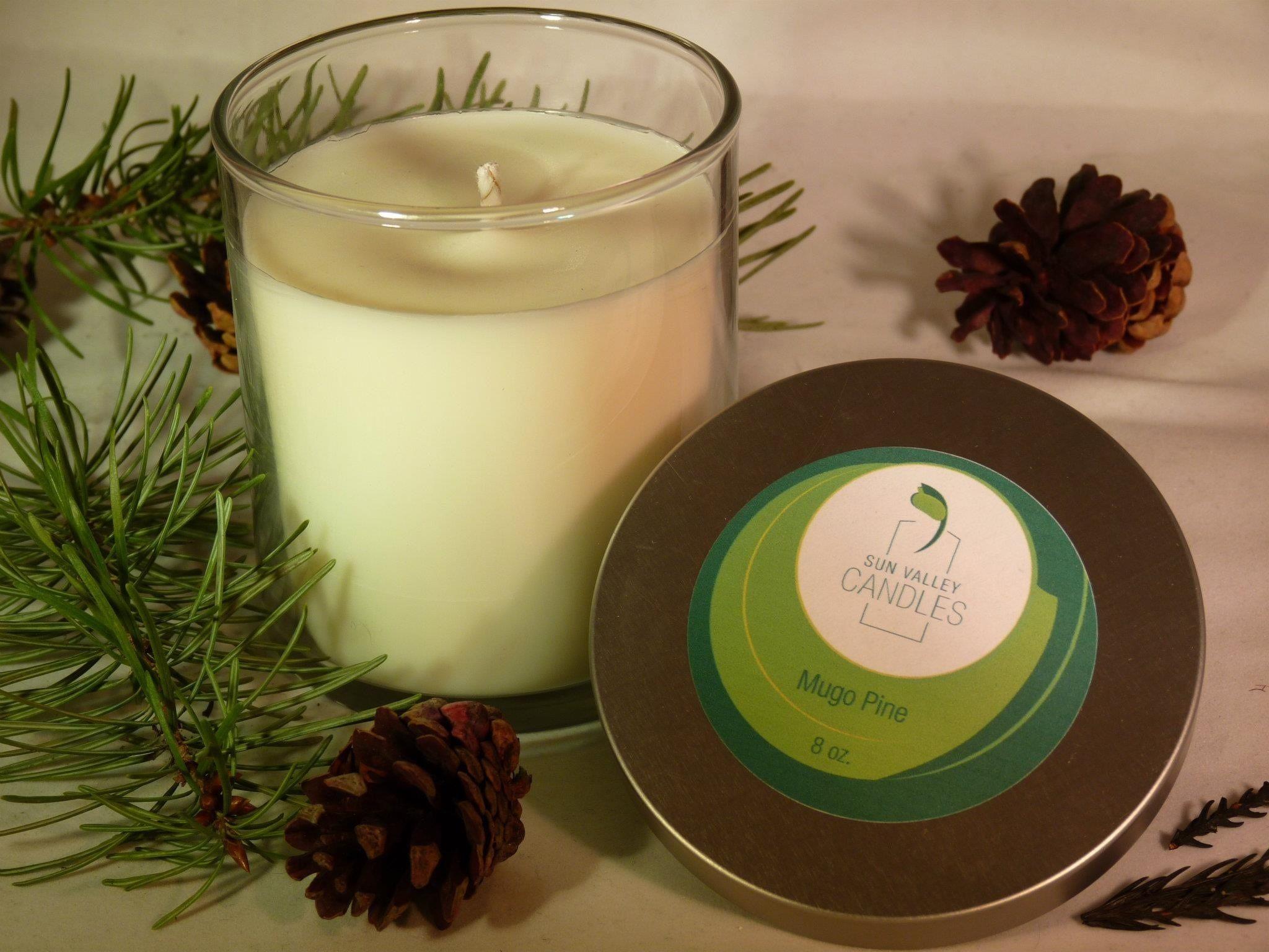 Mugo Pine | Holiday scents, Mugo pine, Orange spice