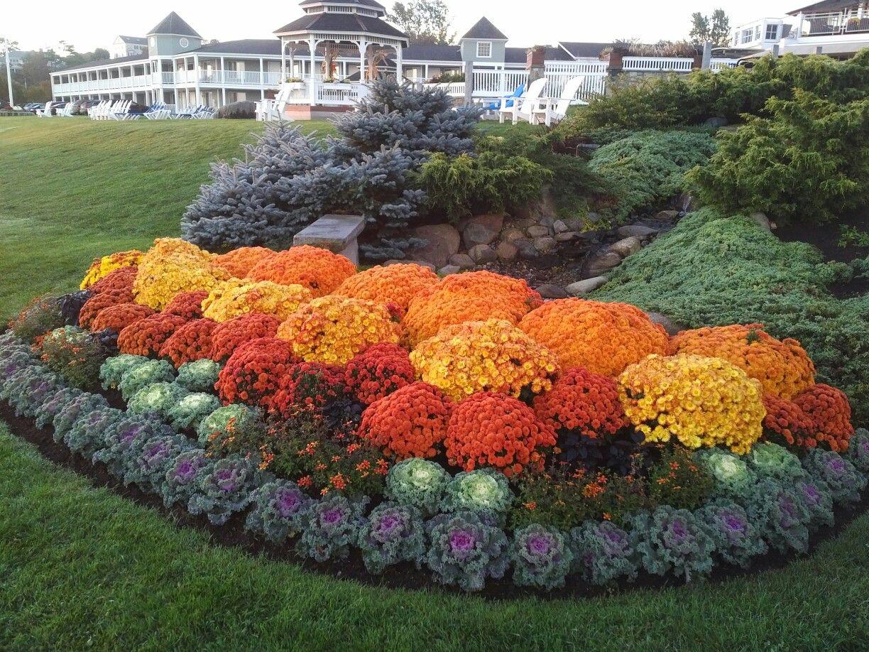 Pin By Sheryl Chitaman On Garden Fall Landscaping Fall Landscaping Front Yard Fall Container Gardens