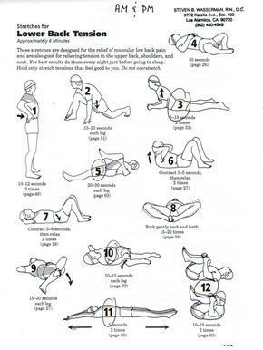 pin on lower back pain workout