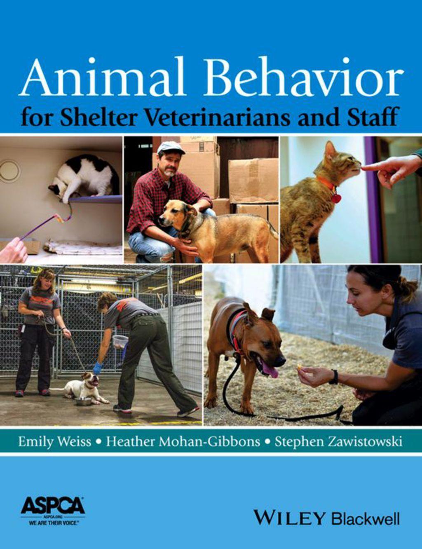Best Dog Training Methods Dogtrainingwomen 6717403313