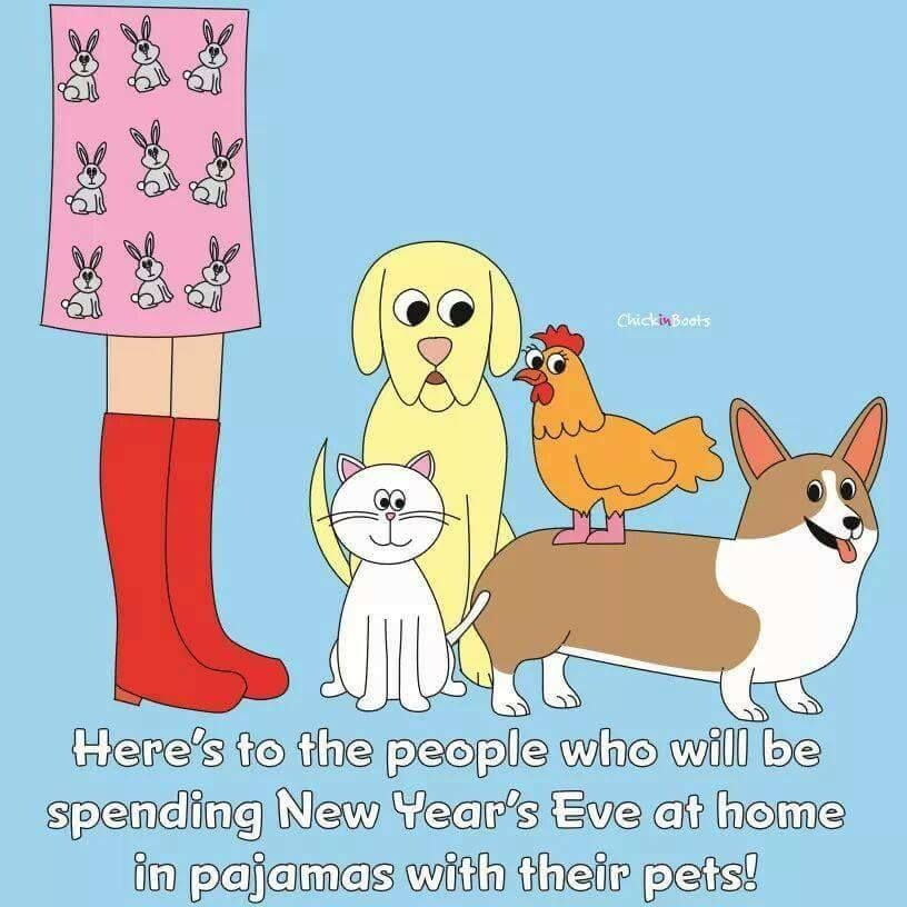 Here S To The People Who Will Be Spending New Year S Eve At Home In Pajamas With Their Pets Animal Lover Quotes Luxury Dog Collars Corgi Art