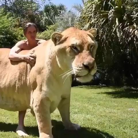 """Vacations 