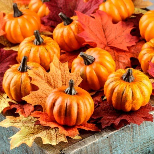 Mini Faux Pumpkins For Tablescape Or Vase Filler Autumn Decor
