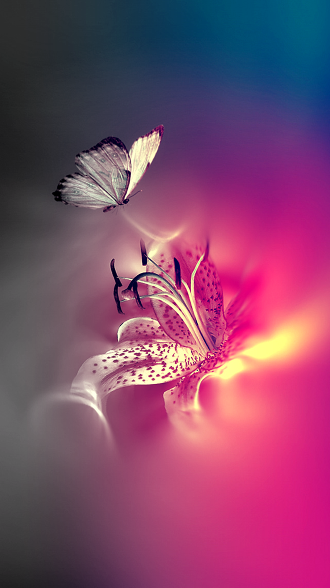 Captivating Light Butterfly Wallpaper Nature Iphone Wallpaper Butterfly Wallpaper Iphone